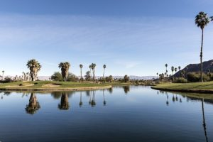 Palm Desert property management